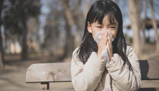 スギ花粉が飛ばない3月4月の沖縄は花粉症患者の楽園